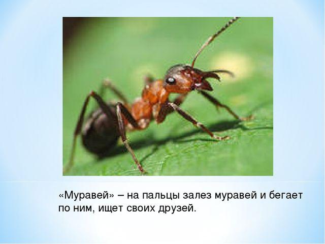 «Муравей» – на пальцы залез муравей и бегает по ним, ищет своих друзей.