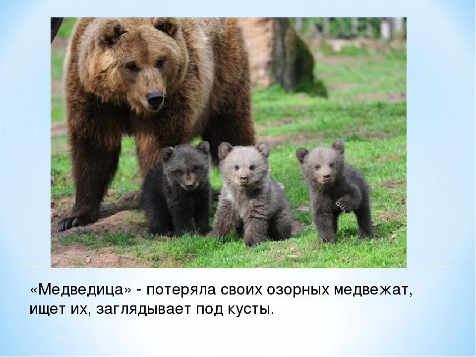«Медведица» - потеряла своих озорных медвежат, ищет их, заглядывает под кусты.