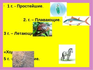 1 г. - Простейшие. 2. г. – Плавающие. 3 г. – Летающие. 4 г. – «Ходильные». 5