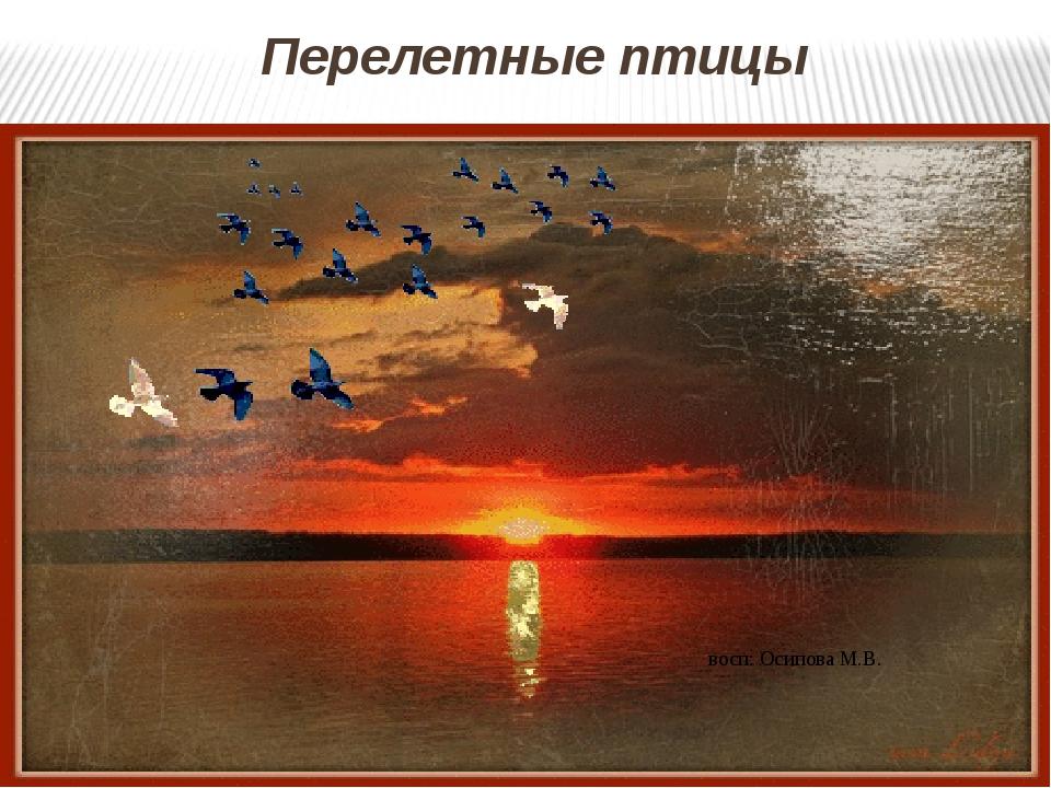 Перелетные птицы восп: Осипова М.В.
