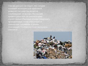 Уже ни для кого не секрет, что сегодня основной экологической проблемой разви