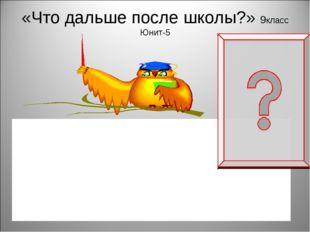 «Что дальше после школы?» 9класс Юнит-5 Are you going to apply to university?