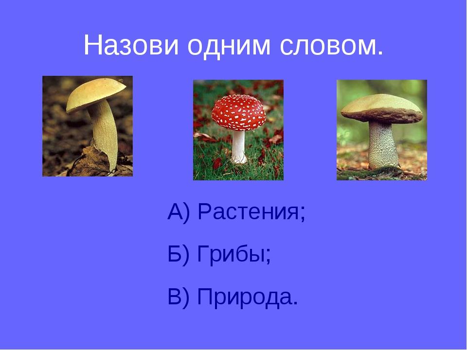 Назови одним словом. А) Растения; Б) Грибы; В) Природа.