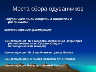 Места сбора одуванчиков -Одуванчики были собраны в биотопах с различными экол