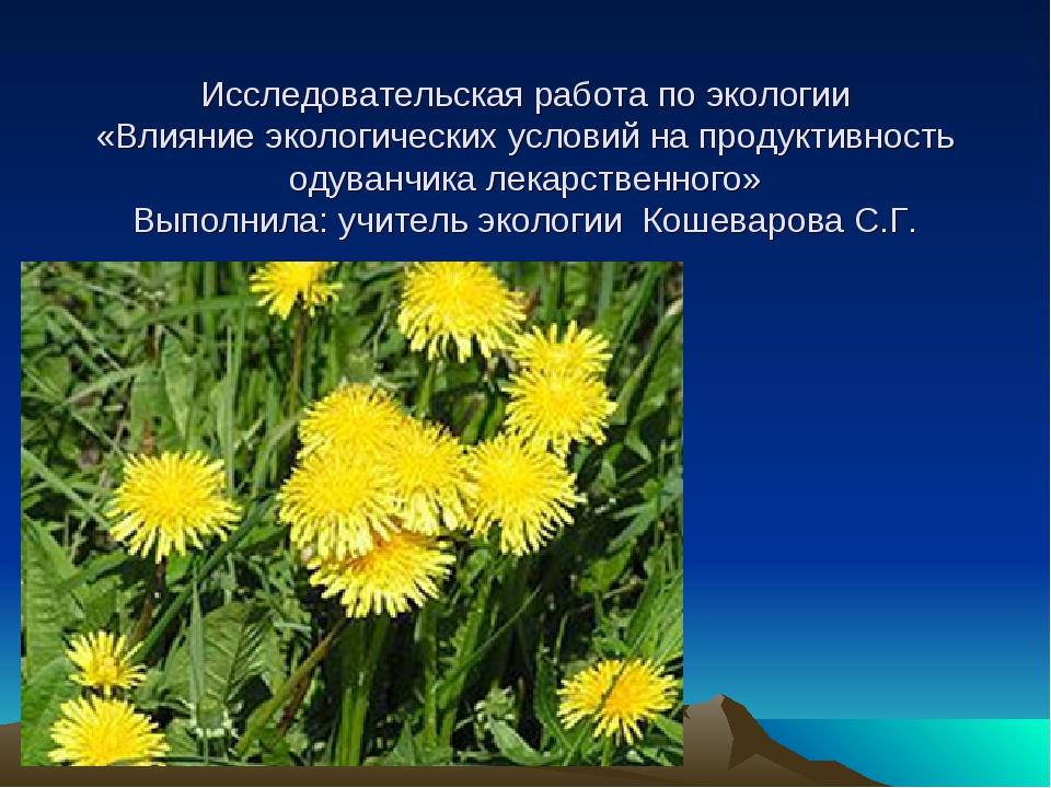 Исследовательская работа по экологии «Влияние экологических условий на проду...