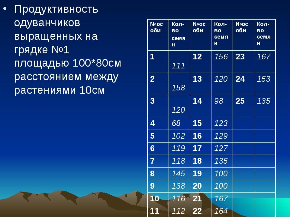 Продуктивность одуванчиков выращенных на грядке №1 площадью 100*80см расстоя...