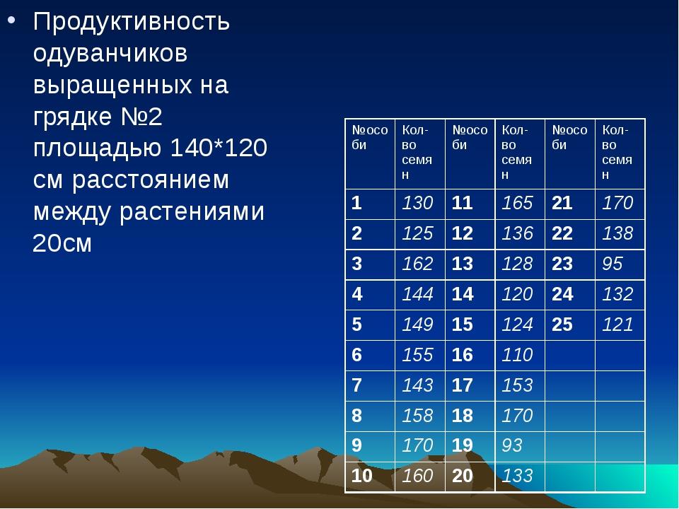 Продуктивность одуванчиков выращенных на грядке №2 площадью 140*120 см расст...