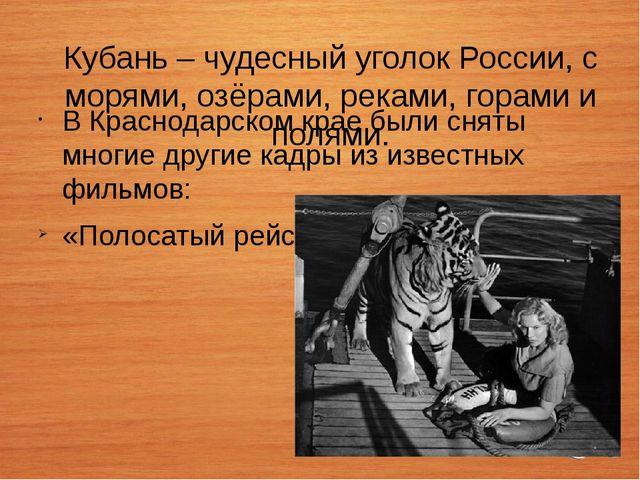 Кубань – чудесный уголок России, с морями, озёрами, реками, горами и полями....