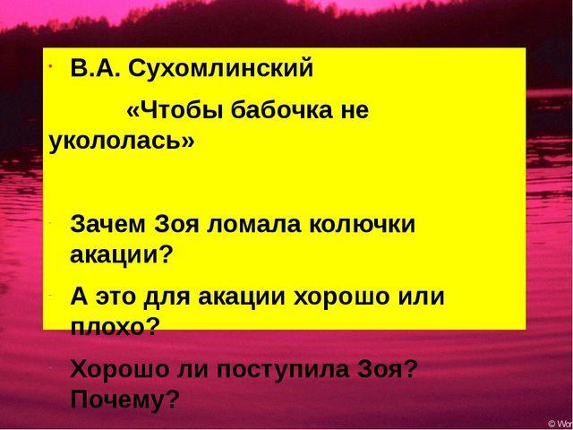 В.А. Сухомлинский «Чтобы бабочка не укололась» Зачем Зоя ломала колючки акаци...