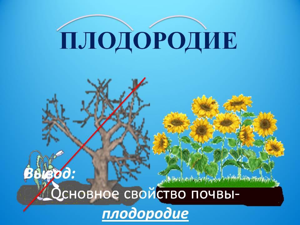 hello_html_m939850a.jpg