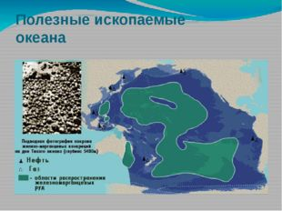 Полезные ископаемые океана