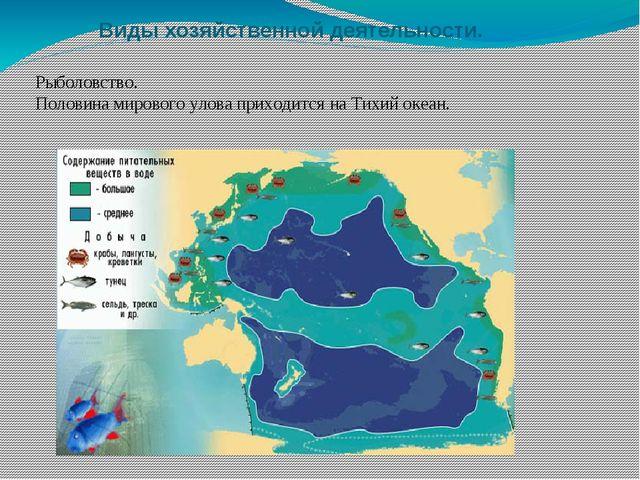 Виды хозяйственной деятельности. Рыболовство. Половина мирового улова приходи...