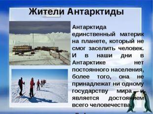 Жители Антарктиды Антарктида единственный материк на планете, который не смог