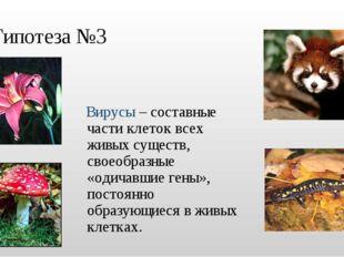 Гипотеза №3 Вирусы – составные части клеток всех живых существ, своеобразные
