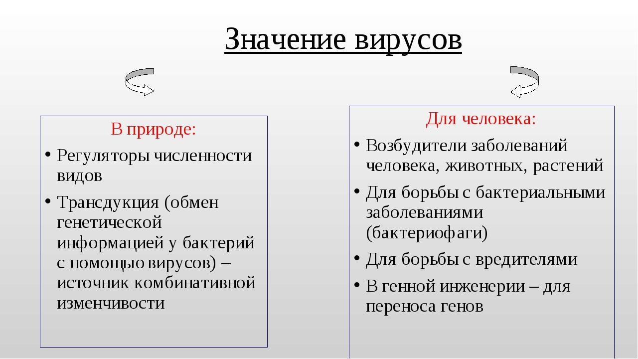 Значение вирусов В природе: Регуляторы численности видов Трансдукция (обмен г...