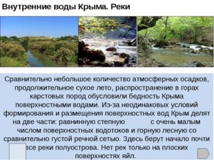 Растительность и животный мир Крыма В Крыму зарегистрировано 2400 видов высши