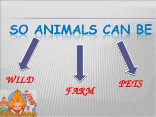 WILD FARM PETS