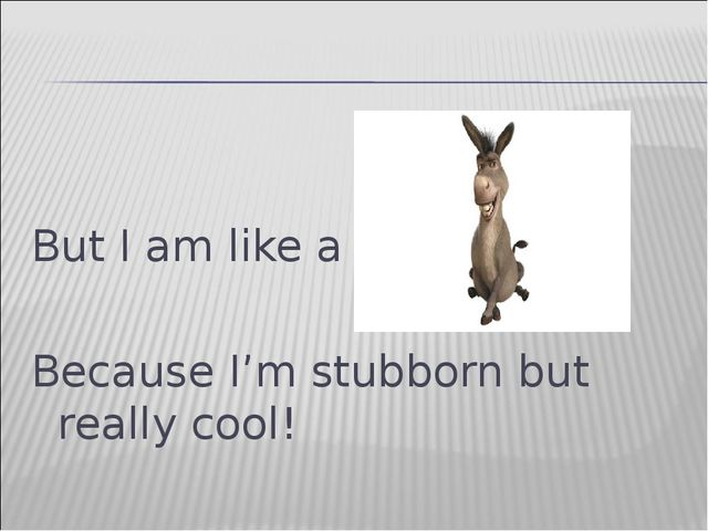 But I am like a Because I'm stubborn but really cool!