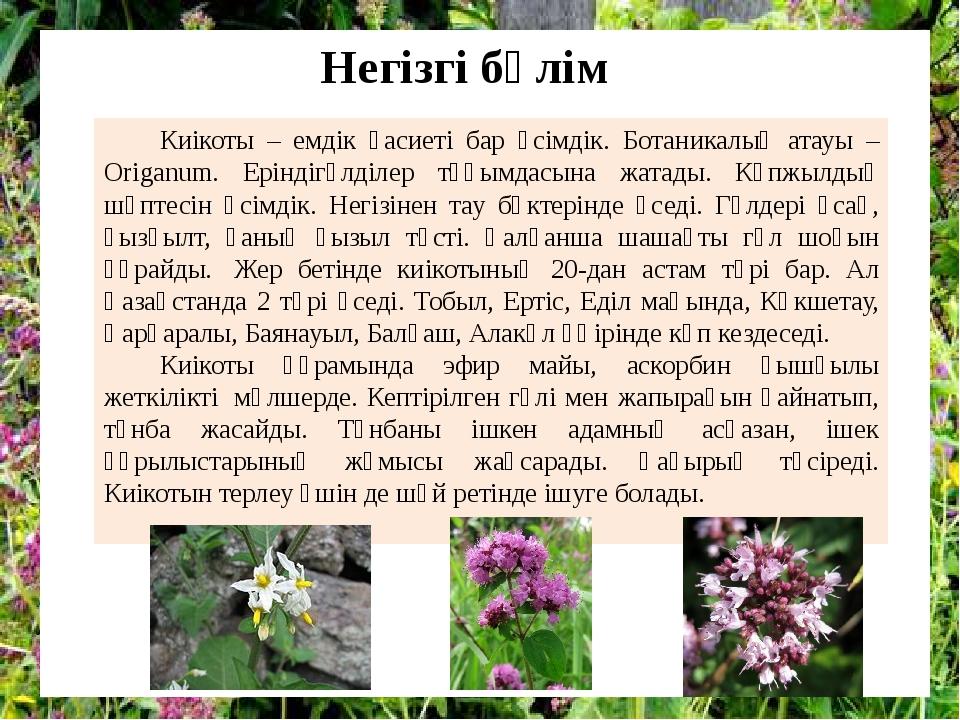Киікоты – емдік қасиеті бар өсімдік. Ботаникалық атауы – Origanum. Еріндігүлд...