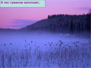 В лес туманом заползает,