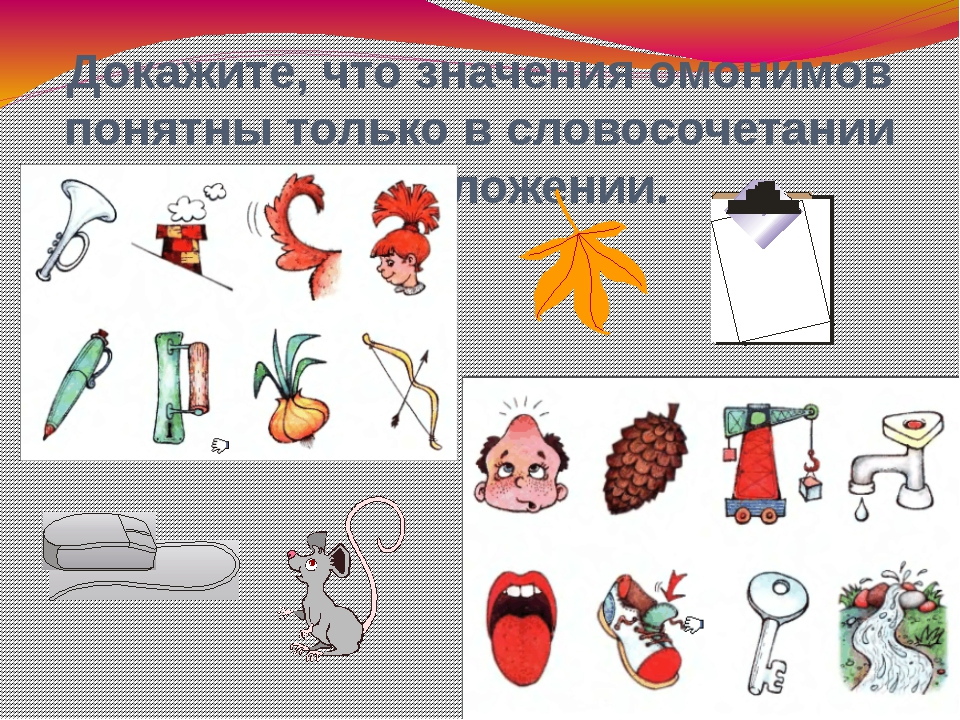 Докажите, что значения омонимов понятны только в словосочетании и предложении.