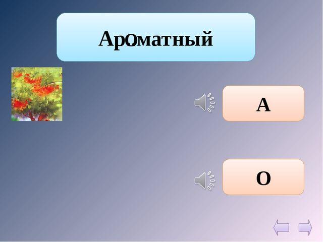 Ар..матный А О О