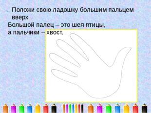 Положи свою ладошку большим пальцем вверх . Большой палец – это шея птицы, а