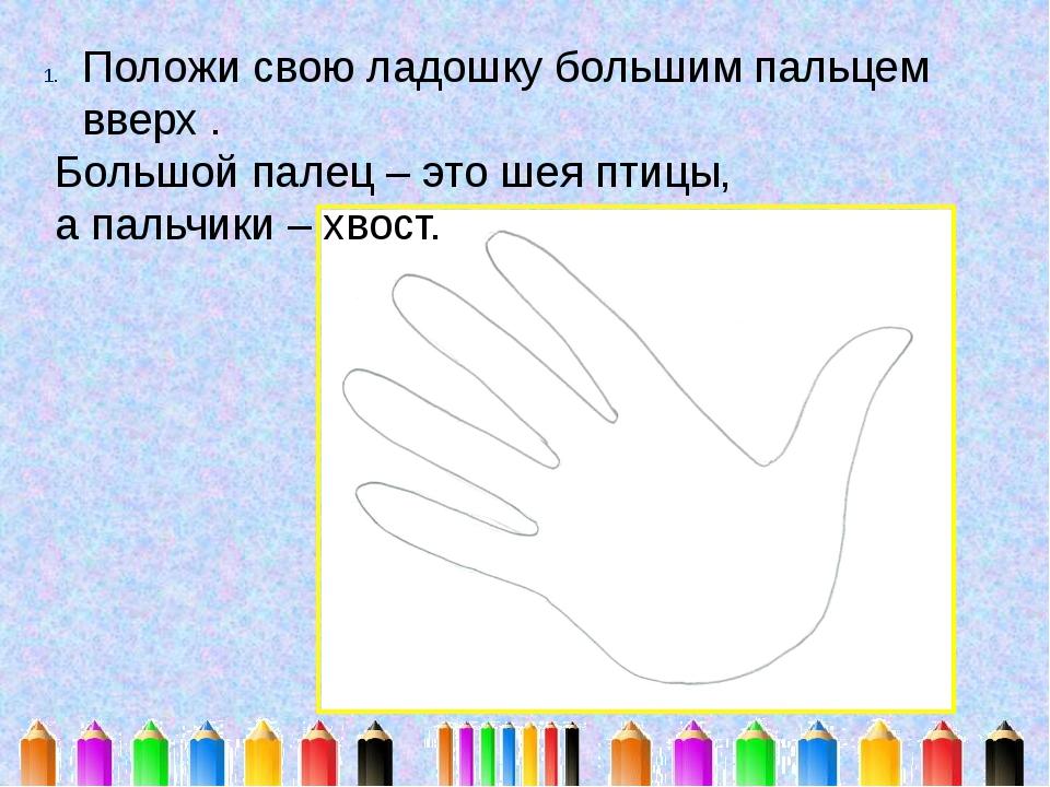 Положи свою ладошку большим пальцем вверх . Большой палец – это шея птицы, а...