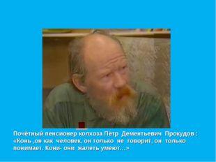 Почётный пенсионер колхоза Пётр Дементьевич Прокудов : «Конь ,он как человек,