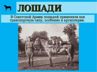 ЛОШАДИ В Советской Армии лошадей применяли как транспортную силу, особенно в