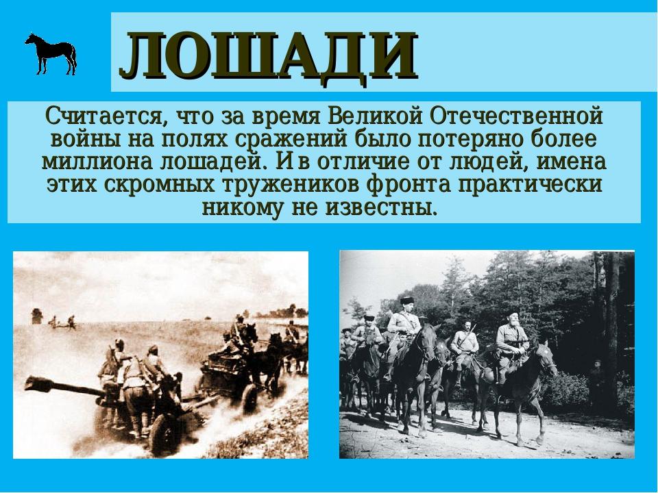 ЛОШАДИ Считается, что за время Великой Отечественной войны на полях сражений...