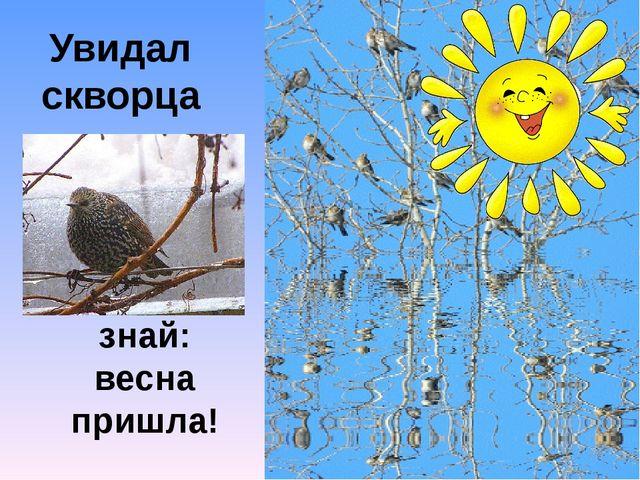 Увидал скворца, знай: весна пришла!
