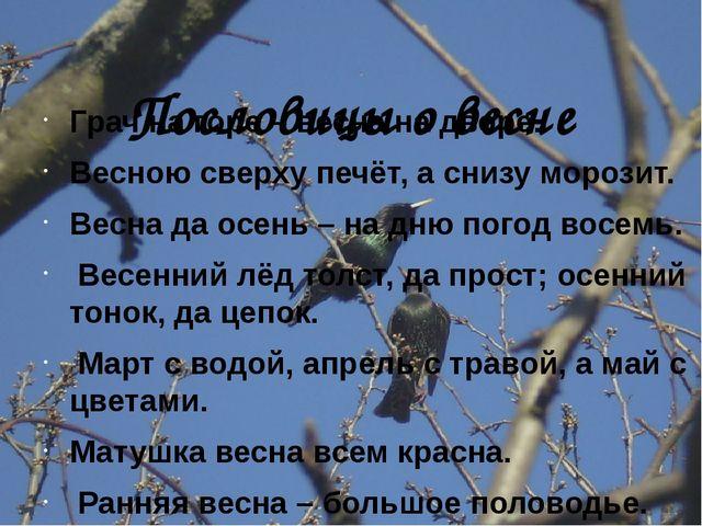 Пословицы о весне Грач на горе – весна на дворе. Весною сверху печёт, а сниз...