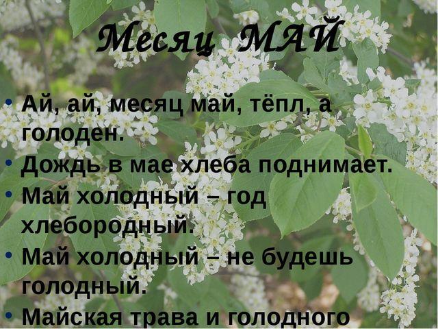 Ай, ай, месяц май, тёпл, а голоден. Дождь в мае хлеба поднимает. Май холодный...