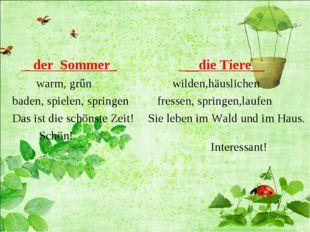 _ der Sommer_ warm, grűn baden, spielen, springen Das ist die schönste Zeit!