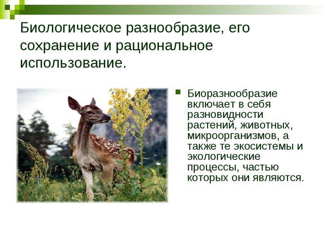Биологическое разнообразие, его сохранение и рациональное использование. Биор...