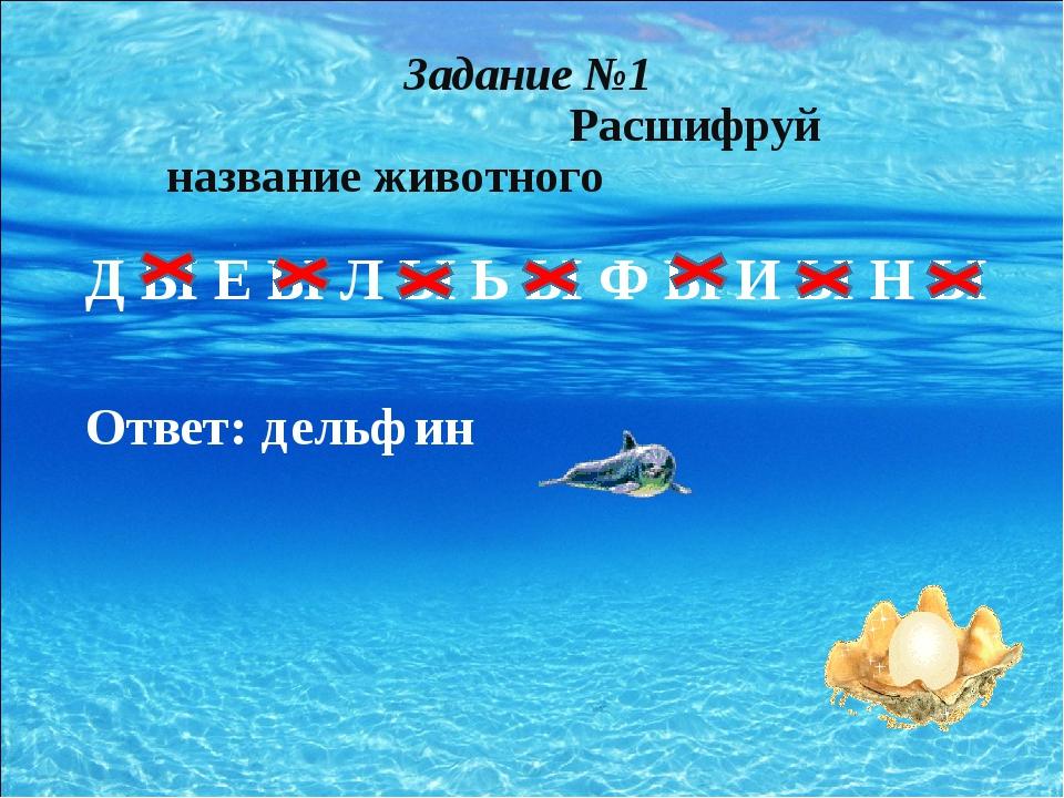 Д Ы Е Ы Л Ы Ь Ы Ф Ы И Ы Н Ы Ответ: дельфин Задание №1 Расшифруй название жив...