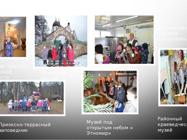 Приокско-террасный заповедник Музей природы тульской области По святым местам...