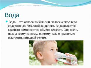 Вода Вода – это основа всей жизни, человеческое тело содержит до 70% этой жид