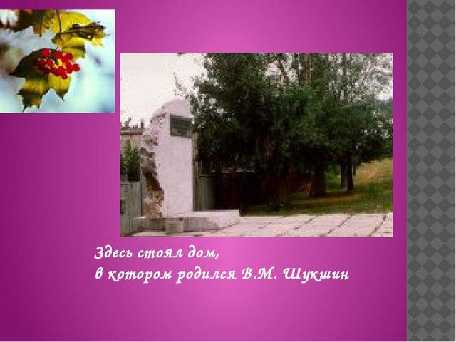 Здесь стоял дом, в котором родился В.М.Шукшин