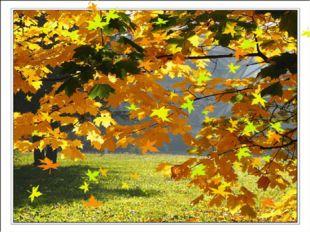 Листья желтые летят, Падают, кружатся, И под ноги просто так Как ковер лож