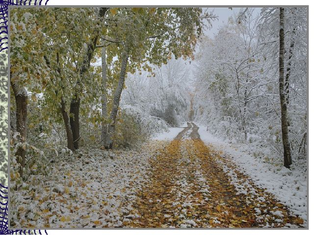 В ноябре деревья голы, Мокнут садики и школы. Рядом с капелькой-дождинкой Вье...