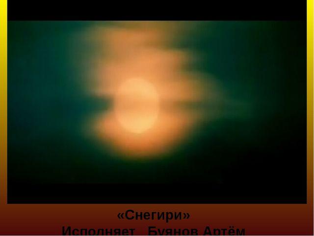«Снегири» Исполняет Буянов Артём