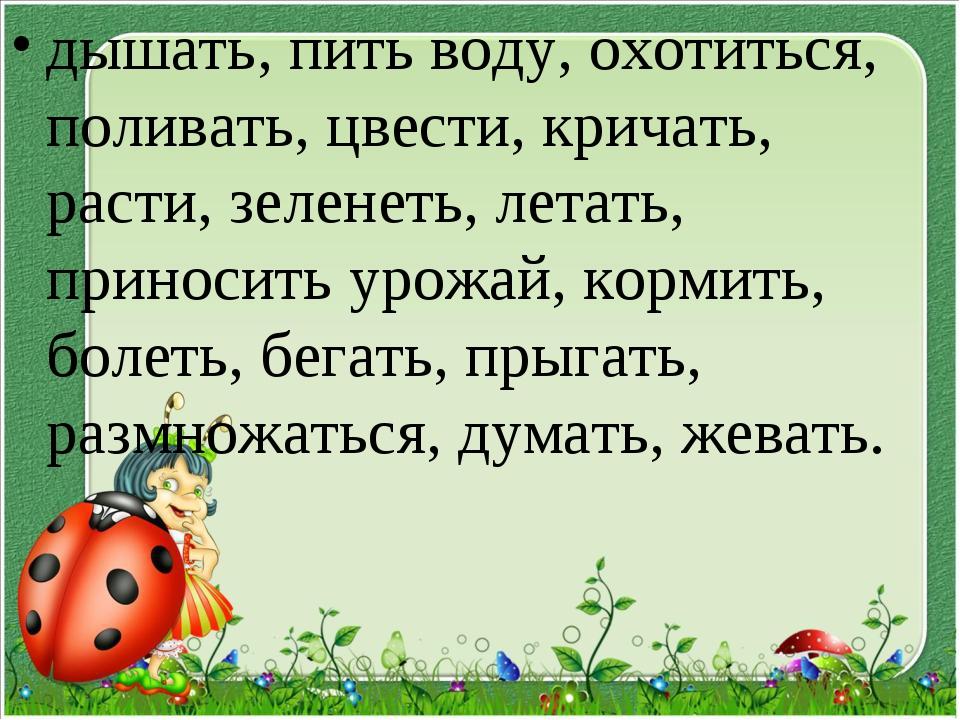 дышать, пить воду, охотиться, поливать, цвести, кричать, расти, зеленеть, лет...
