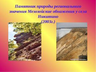 Памятник природы регионального значения Мезозойские обнажения у села Никитин