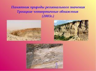 Памятник природы регионального значения Троицкие четвертичные обнажения (200