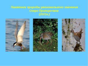 Памятник природы регионального значения Озеро Пригорочное (2003г.)