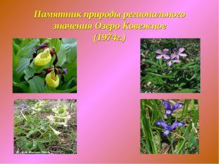 Памятник природы регионального значения Озеро Ковежное (1974г.)