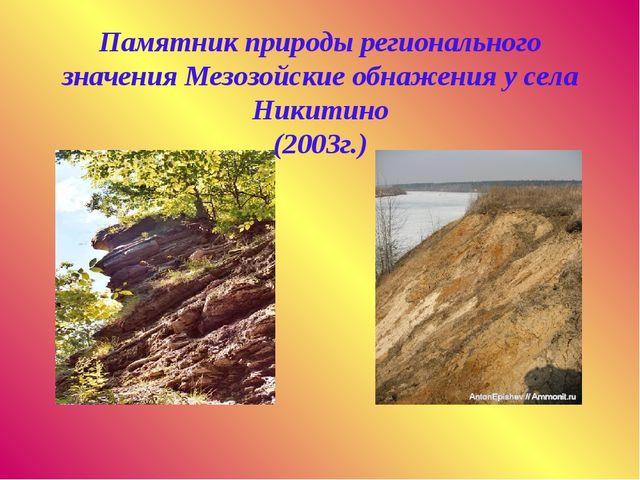 Памятник природы регионального значения Мезозойские обнажения у села Никитин...