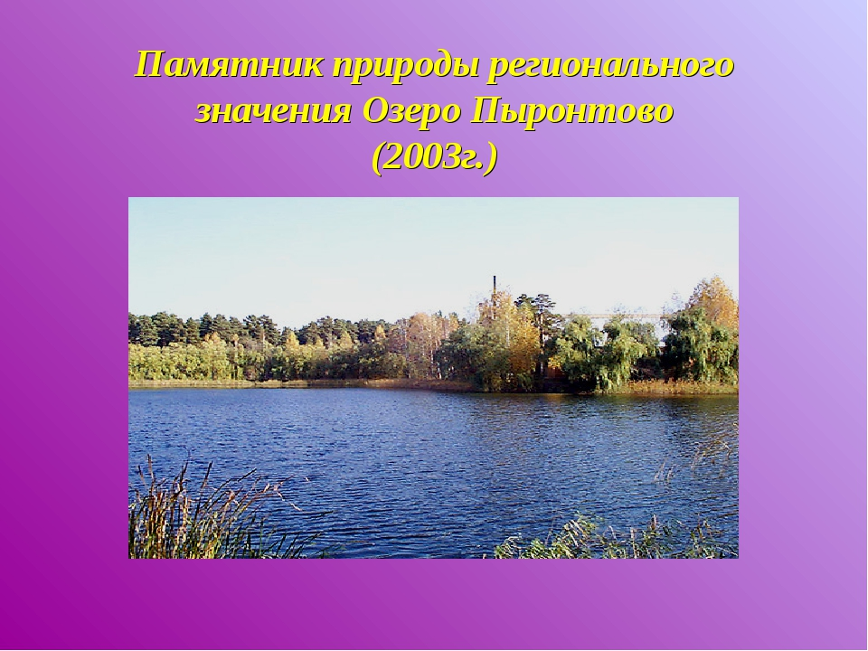 Памятник природы регионального значения Озеро Пыронтово (2003г.)